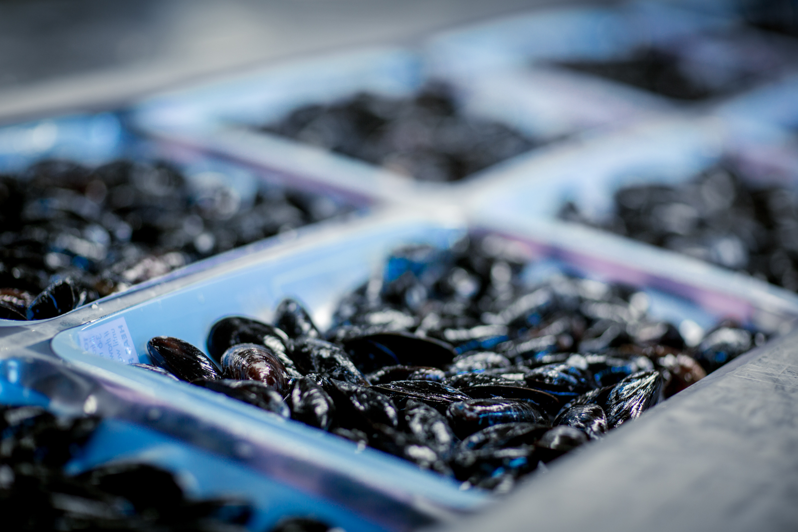 PEI Mussel King mussels product package